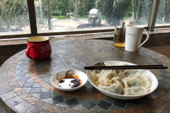 A warm welcome: homemade dumplings for lunch
