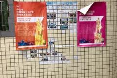 Posters in Long Tau Wan