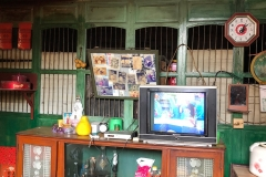 Shrine, photos, TV, clock